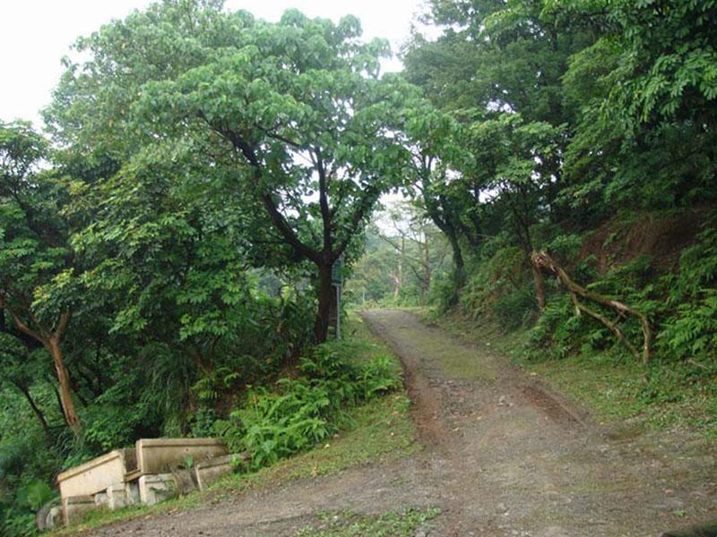 泉源溪畔土地05