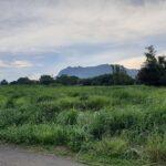 A4524-陽明山觀海溫泉土地-04