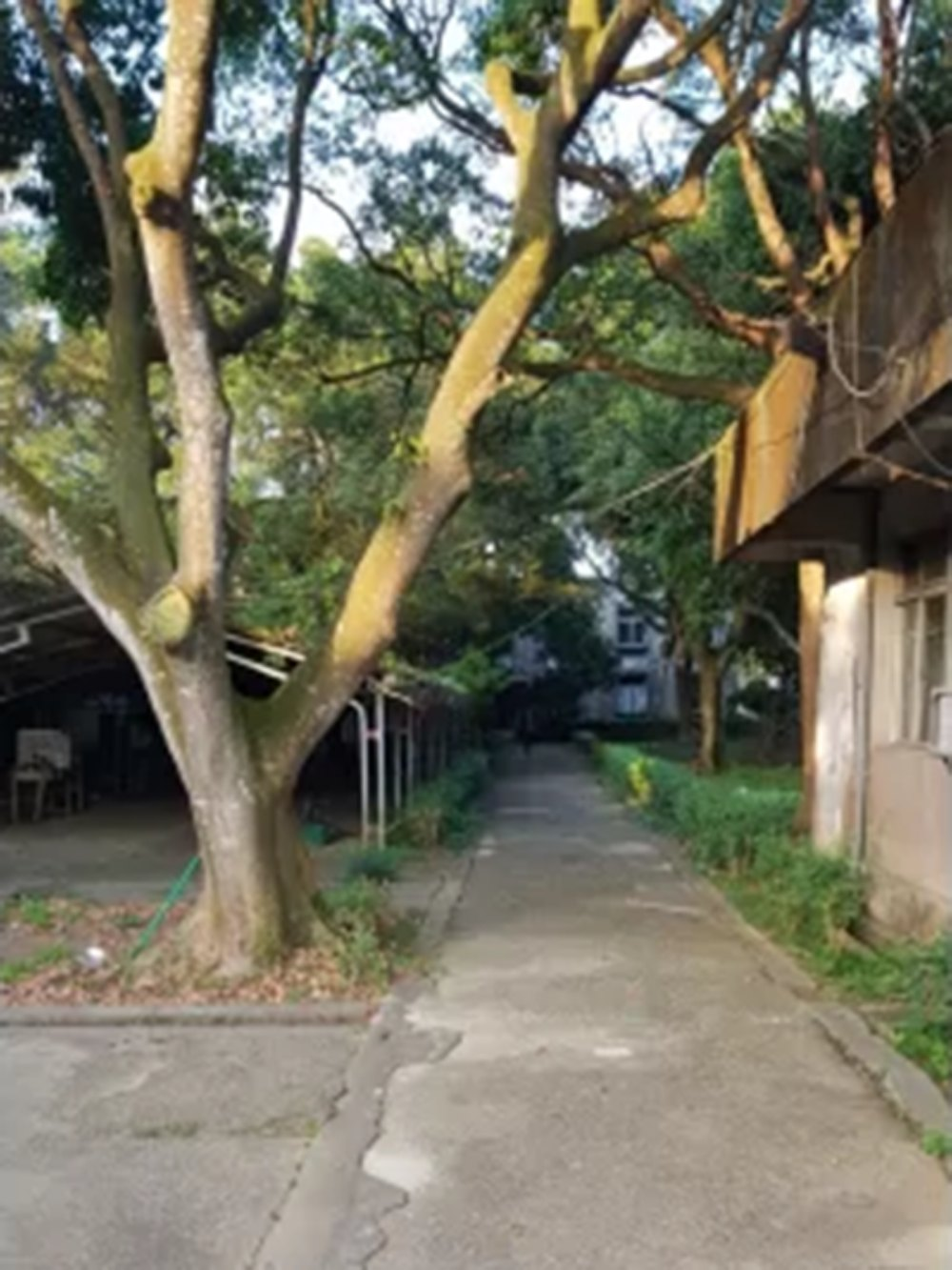 A4623-龍潭高楊第二交流道丁建工業地-09