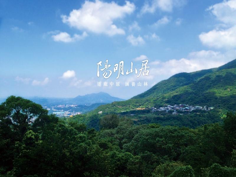 陽明山居_窗景