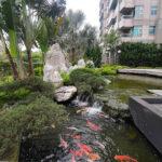 A4695_帝景水花園高樓景觀 (6)_水池